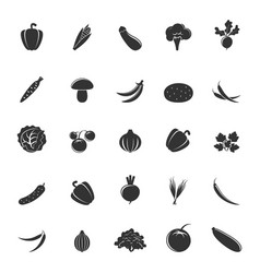 gray vegetable silhouettes vector image