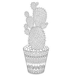 Zentangle cactus hand drawn outline desert plant vector