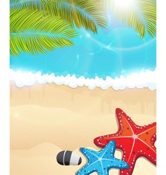Beach with palm branches and starfishes vector