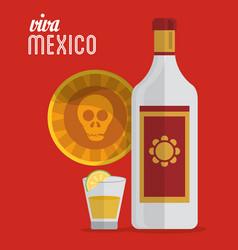 Viva mexico tequila skull card vector