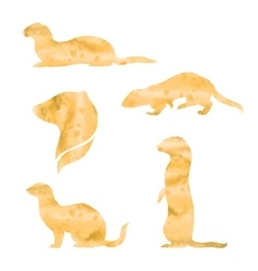 Watercolor silhouettes of a ferret vector