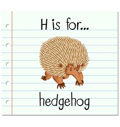 Flashcard letter h is for hedgehog vector