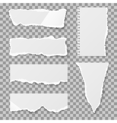 Blank torn paper with bends and tears set vector image vector image