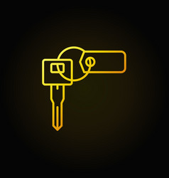 car key with tag colorful icon vector image
