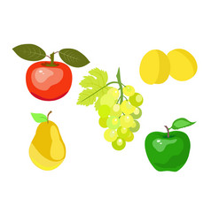 Summer juicy fruit vector