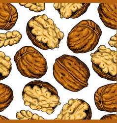 walnut nuts hand drawn seamless pattern vector image vector image