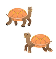 Turtles cartoon orange smile isolated vector
