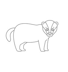 badger for coloring book vector image