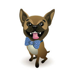 Dog breed french bulldog beige french bulldog vector
