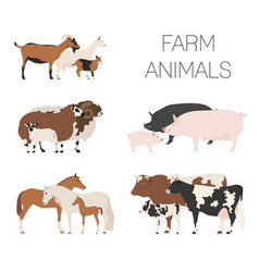Farm animall family collection cattle sheep pig vector