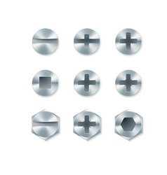 set of screws and bolts nails isolated on white vector image