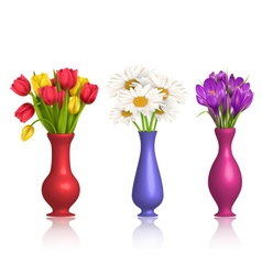 Tulips chamomiles and crocuses in vases with vector