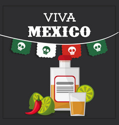 Viva mexico greeting image vector