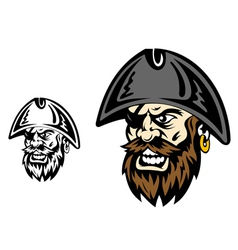 Angry corsair and pirate captain vector image