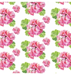 Delicate pink geranium flowers pattern vector