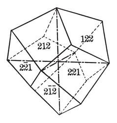 Deltoid dodecahedron vintage vector