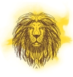 Hand drawn with lion head vector