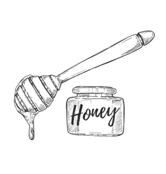 Honey jar and stick freehand pencil drawing vector