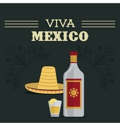 Tequila bottle and shot icon mexico culture vector