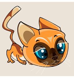 cartoon cute beautiful cat vector image vector image