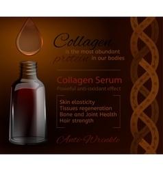Collagen image vector image