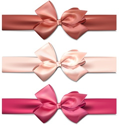 Satin color ribbons gift bows vector