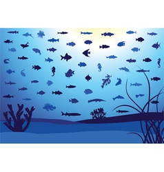 Fish silhouettes underwater vector