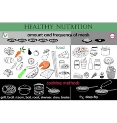 Infographic healthy nutrition vector