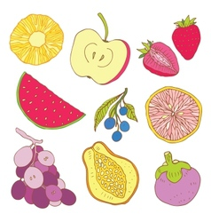 Set of tropical fruit vector