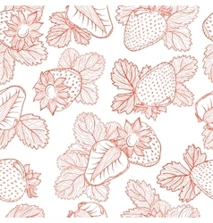 Drawing pattern of strawberries vector