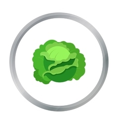 Cabbage icon cartoon single plant icon from the vector