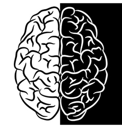 Brain shape vector image