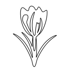 Flower spring natural decoration thin line vector