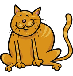 yellow sitting cat vector image