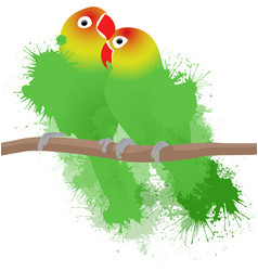 Lovebirds parrots vector