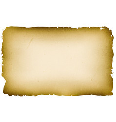 old textured parchment background vector image vector image