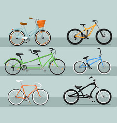 Different types bicycle isolated set vector