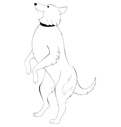 Dog standing on hind legs vector