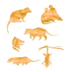 Watercolor silhouettes of a opossum vector
