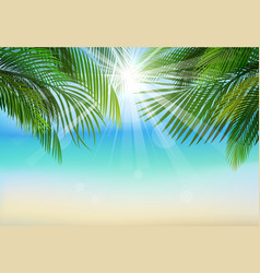 Palm leaf background on blue sky and sunbeams vector