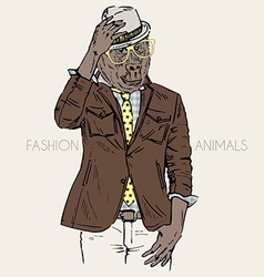 Fashion of gorilla dressed up in leather jacket vector