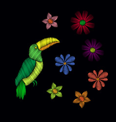 beautiful toucan embroidery vector image