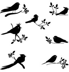 Collection of bird silhouettes vector