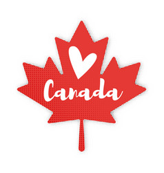 flat style of maple leaf vector image vector image