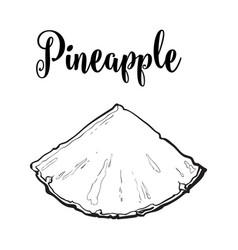 Unpeeled pineapplewedge triangular slice sifde vector