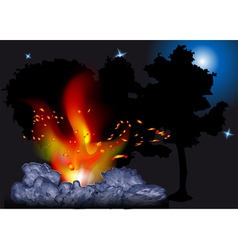 Night bonfire vector