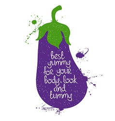 Colorful of isolated eggplant silhouette vector