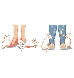 Cute cat rubbing against owner legs and feet vector