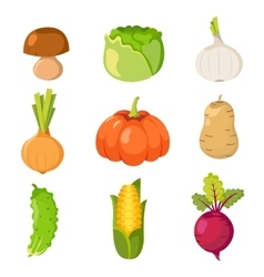 Healty food cartoon representing set vector