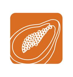 Label delicious pawpaw tropic fruits vector